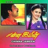 Chinna Jameen